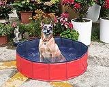 Hundepool Hunde Badewanne Pool Umweltfreundliches PVC Pool für Hunde 120x30 cm Rot