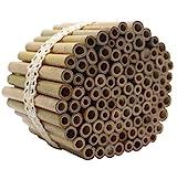 Super Idee 100 Stück 10cm Länge Bambusröhrchen für Insektenhotel...