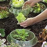 U/N Salatringe | Effektiver Schneckenschutz für Ihre Salatpflanzen und Kohl |...